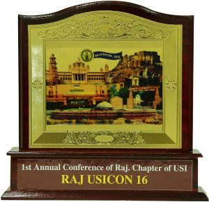 1st annual conference of Raj. Chapter of USI